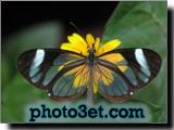 www.photo3et.com