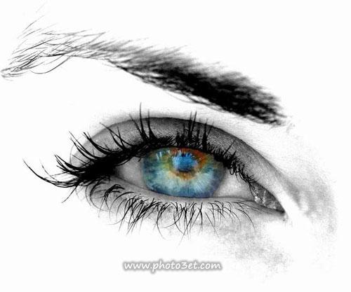 گالری عکس چشم ]al eye