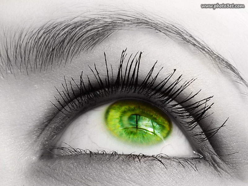 نگاه زیبای چشم سبز