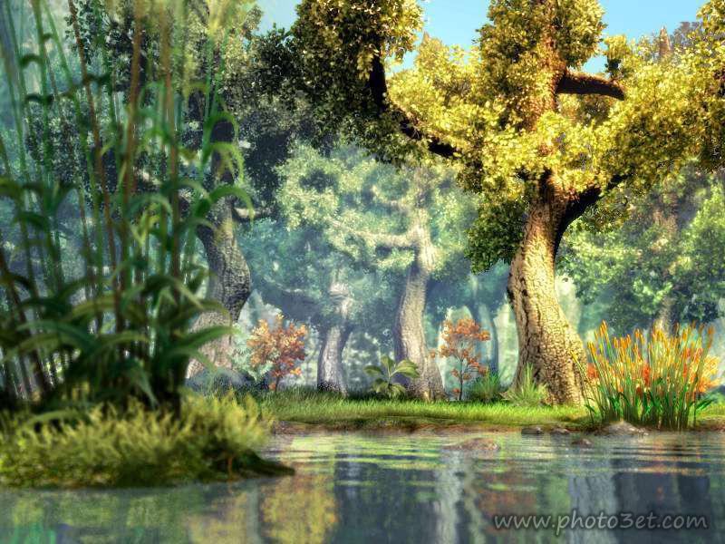 عکس والپیپر فانتزی طبیعت جنگل