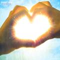 عکس قلب با پر های سفید