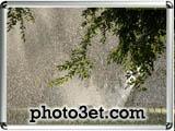 عکس های رویایی و احساسی از بارون