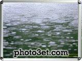 rain photo gallery