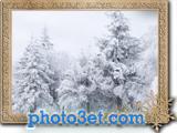 گالری عکس طبیعت زمستان