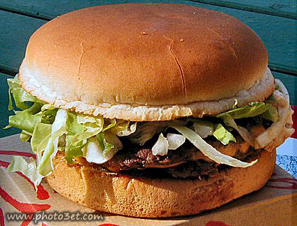 همبرگر ساندویچ